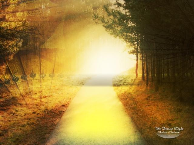 divine_light_by_deinha1974