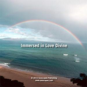 DVDDiscFaceTemplate