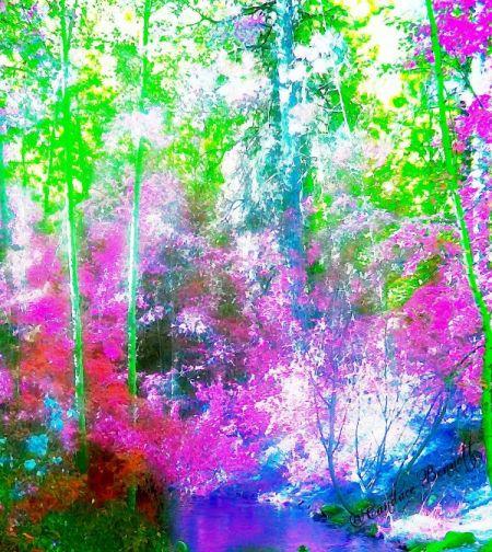 water-coloured-dreams-1353171399_b