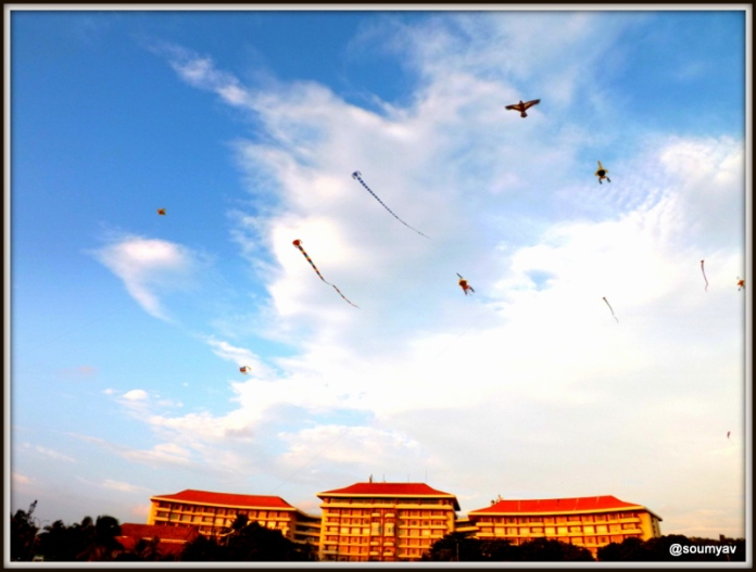 kites flying high