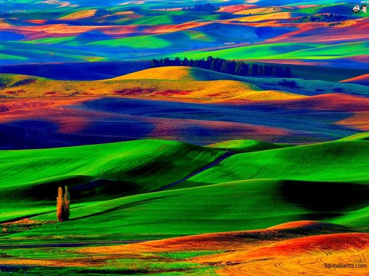landscapes-247a