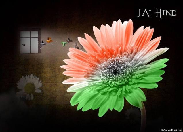 Indian-Flag-Color-Flower-For-Independence-Day