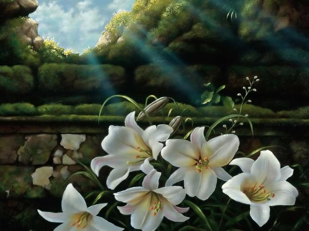 White_lilies_windows_wallpaper